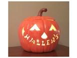 """order a large light-up (11"""") carved pumpkin"""