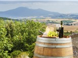 Corporate Events: Olalla Valley Vineyard
