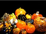 The Gourd-geous Experience - Watch & Learn