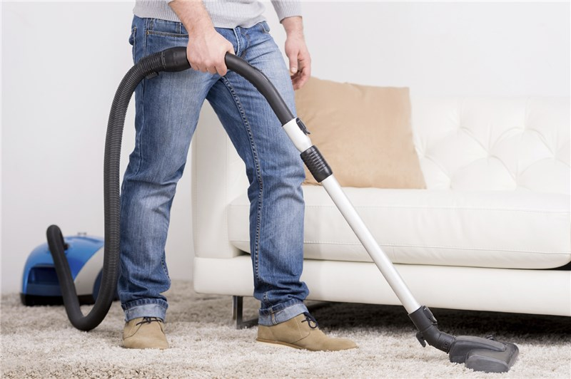The Professionals Carpet Cleaning