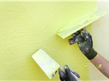 Interior Painting: Sunnyside Painting Wallpaper