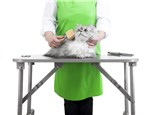 Pet Grooming: Our Pet & Plant Care