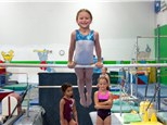 Summer Family Punch Card (60 minutes) - Northshore Gymnastics