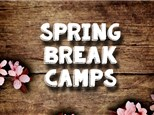 Book Vase Camp: Monday, March 26th, Morning Camp 2017