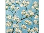 Summer Blossoms - 12x12 canvas