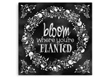 Bloom Where You're Planted Summer Camp - July 10th-14th