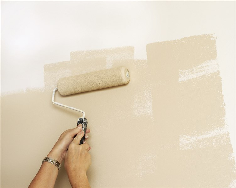 Hoffman Estates Painting Interior Exterior Painter