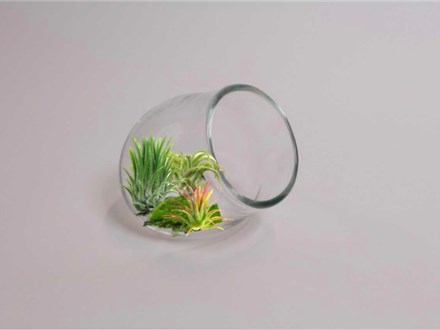 glassblowing workshop - make your own terrarium