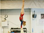Classes: Flying High Gymnastics