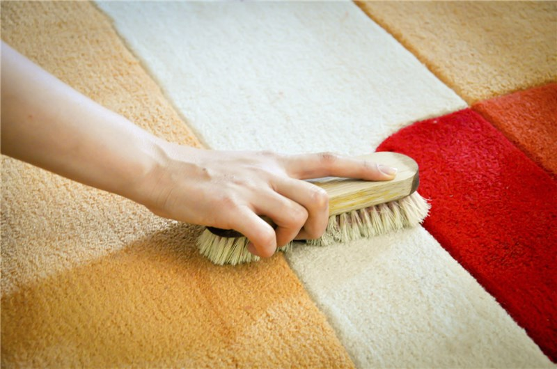 Encino Expert Carpet Cleaners