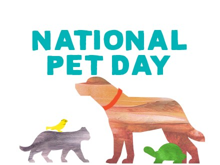 Clay Paw Prints for National Pet Day - April 14th 2020