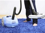 Carpet Cleaning: Fresh & Clean Carpet Cleaning