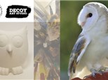 You're Raptor my heART: Owl Pottery Bank Painting with the Raptor Center