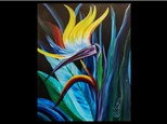 08/31 Bird of Paradise 7pm $45