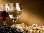 Redneck Wine Tasting
