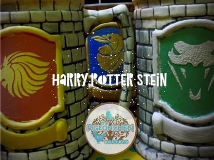 Harry Potter Stein Class