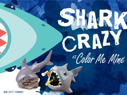 Shark Crazy Summer Workshop - Shark Bank or Scrubby! - July 9th 2019