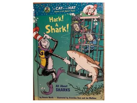 """4-7yr olds - Story Time """"Hark a Shark""""  Paint a Shark Bank 8/8"""