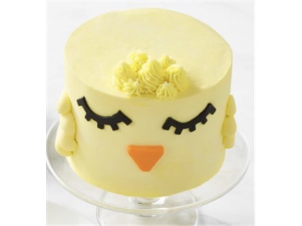 Parent/Child Easter Chick Cake Class