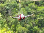 Corporate Event: Lake Geneva Canopy Tours