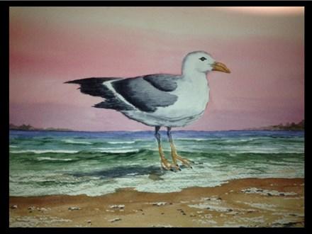 """03/18 GA-Watercolor: """"Sea Gull on the Beach"""" 6:30pm - 9:30pm $45"""