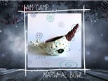 Narwhal Bowl Camp: Wednesday, January 2nd 2018 (Morning Camp)