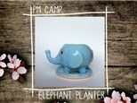 Elephant Planter Camp: Monday, March 25th, Afternoon Camp 2019