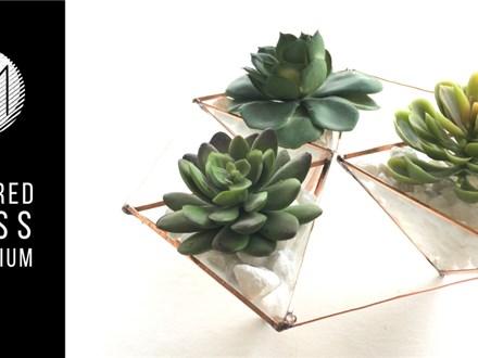 Soldered Glass Terrarium