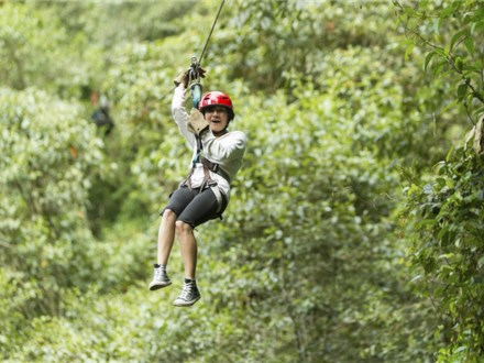 Weekend Canopy Tour
