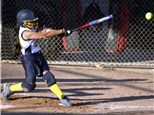 Baseball/Softball Batting Cages: Personal Pitcher
