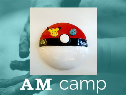 Catch 'Em All Wall Pocket (Animation Action) August 3rd, Morning Camp 2017