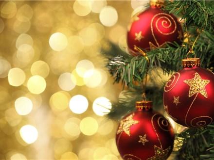 Christmas Tree Painting - December 1