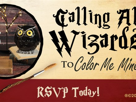 Wizard Workshop- Harry Potters Birthday Bash!