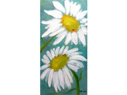 Daisies 10x20 canvas