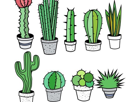 We stick together (cactus) Camp!