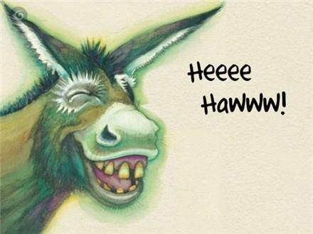 Wonky Donkey - Aug. 6