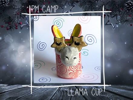 Llama Cup Camp: Thursday, January 3rd 2018 (Afternoon Camp)