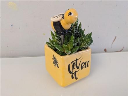 Bumble Bee Succulent Planter Class $40 (Adult)