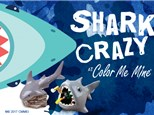 Shark Workshop