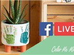 Facebook Live Class Footed Planter