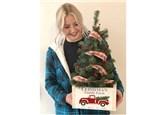 Christmas Tree with Box