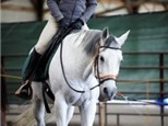 Adult Lessons that teach Balance and Centered riding skills.