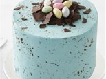Adult Speckled Egg Cake Class