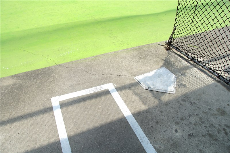 My Batters Box