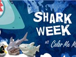 Shark Week themed Kids Night Out, July 13th 2018
