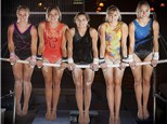 Camps: Falcon Gymnastics Center