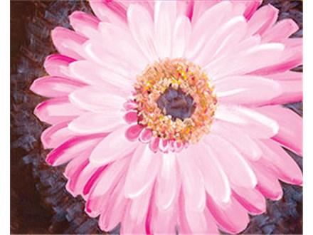 Canvas & Wine Night!  Pink Gerbera Daisy!   4/25/16