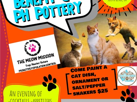Cabernet for Cats A Meow Mission Fundraiser At PH Pottery
