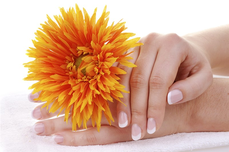 D�Agostino Hair and Nail Salon