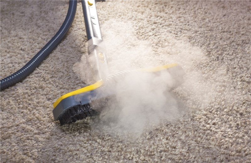 Swift Carpet Cleaning